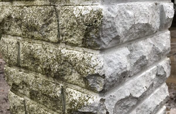 sambla eemaldus aiapostide pesu puhastus survepesu kivi pesu sammaldunud